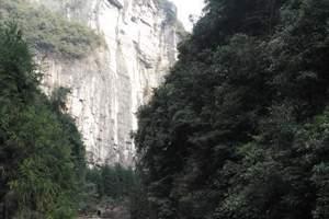 出彩中国:探武隆天坑地缝之秘、赏赤水名胜风情双飞5日游