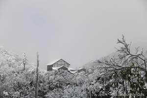 重庆冬季赏雪好去处_金佛山冰雪节、天星小镇一日游_0购物