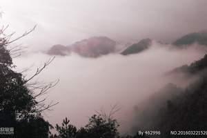 韶关南岭国家森林公园|避暑林庄温泉|直通车二天