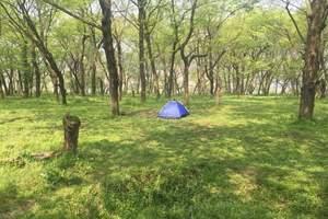 桐洲岛户马庄园自然探索抓螃蟹,露营挑战亲子二日营