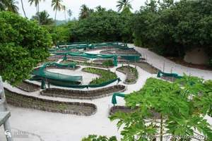马尔代夫水屋的岛-马尔代夫尼亚玛岛奢华六星、水飞上岛_5日游