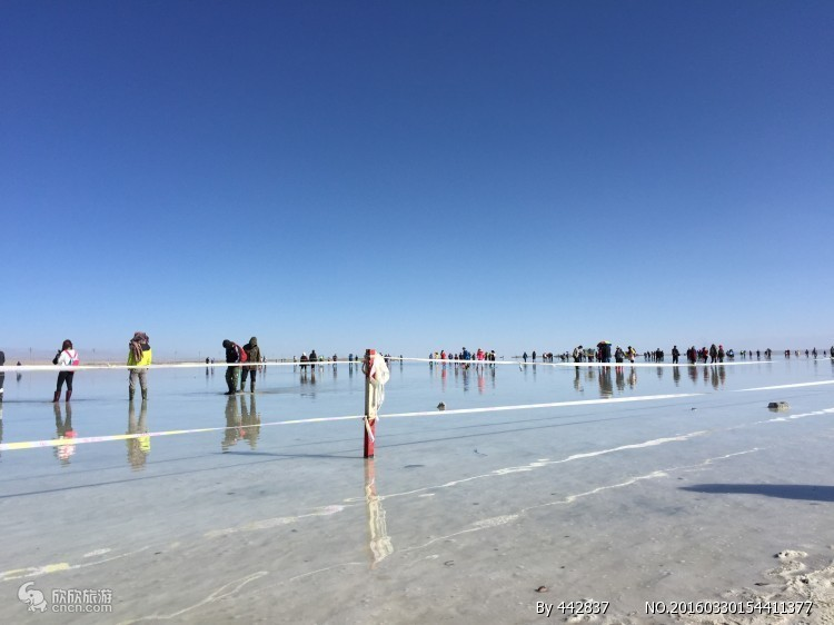 茶卡鹽湖圖片