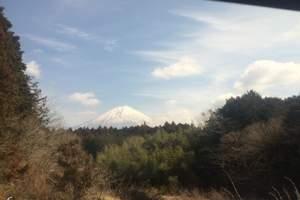 【体验大和风情】成都到日本本州双飞7日舒适游
