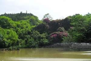 青岛到重庆双飞五日游 重庆市区+仙女山+天坑 去重庆多少钱