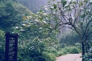 福源洞、百魔洞、百鸟岩、长寿村2日游