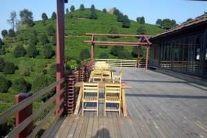 七仙峰茶场