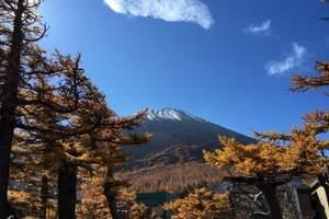 淄博去日本旅游 淄博去日本线路 淄博去日本本州全景六日游尊享
