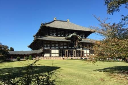 合肥到日本旅游  轻奢东京富士山京都奈良大阪双古都全景7日游