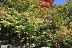 西安到日本旅游 西安青旅  289奢华之旅日本8日飞机往返L