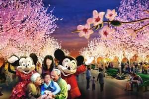 淄博去上海迪士尼 淄博去上海迪士尼攻略 淄博上海迪士尼四日游