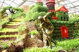 淄博到2019年第二十届中国(寿光)国际蔬菜科技博览会一日游
