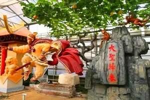 淄博到寿光菜博会、牡丹园一日游 淄博到寿光蔬菜博览会一日游