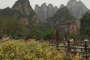 野三坡森林大峡谷一日游