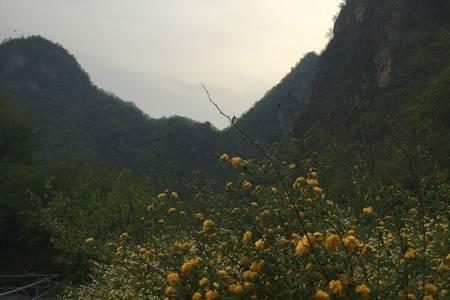 【秦皇岛到野三坡旅游】野三坡百里峡+仙栖洞2日游-周六发团