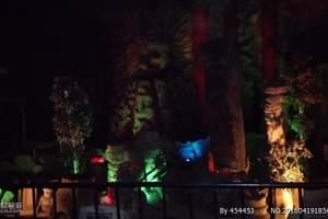 长影世纪城夜场灯光节成人票