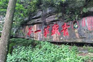 成都到都江堰青城山纯玩儿1日游、含餐