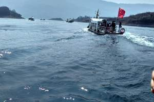 黄石仙岛湖仙湖画小雷山-趣味采摘五星二日游