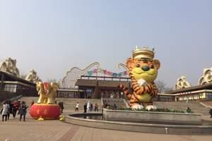 淄博出发到济南野生动物园一日 淄博到济南野生动物园一日游