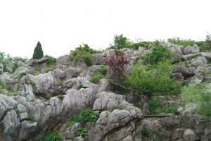 丫山花海石林