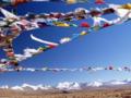 7月宁波—拉萨、林芝大峡谷、鲁朗林海卧飞10天品质游