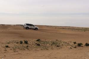 宁夏旅游/行影大漠·西夏秘境 腾格里沙漠月亮湖穿越之旅五日游