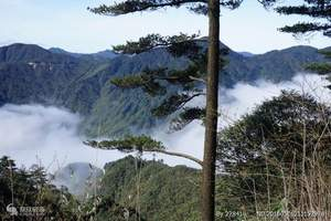 单位去湖南莽山、王仙岭、东江骑行、尽享美食高铁三天游
