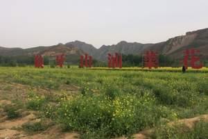 清明节石家庄周边一日游 狼牙山花海、太行水镇一日-赏万亩花海