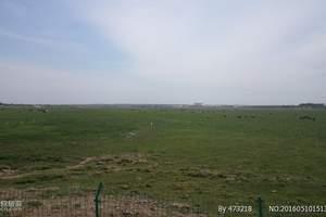 希拉穆仁草原、库布其沙漠二日游