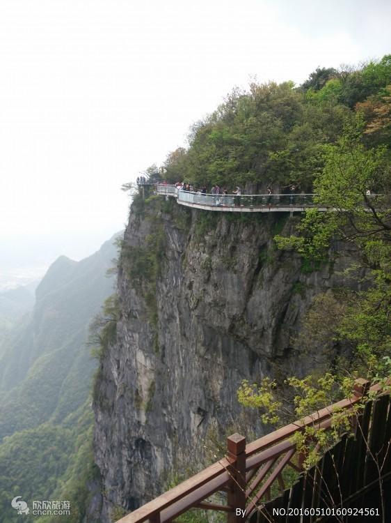 森林公园+大峡谷玻璃桥+天门山独立成团