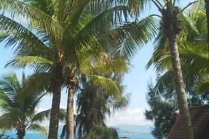 【海口往返篇】椰风·海岛
