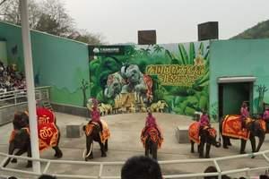 大连旅游_丹东到大连森林动物园旅游_大连圣亚海洋世界两日游