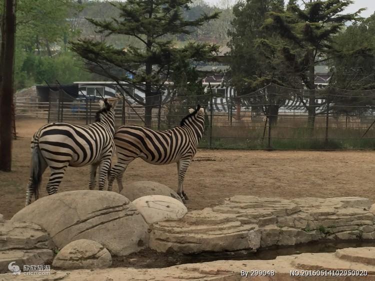 济南植物园门票预定-济南旅游景点