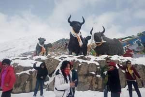 暑假郑州到西藏旅游_西藏双卧11天多少钱_布达拉宫旅游团