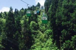 【鄂西之旅】咸丰坪坝营原始森林景区一日游