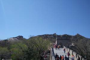天津到北京八达岭长城、熊乐园、博物馆一日游直通车