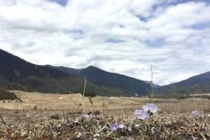 西安到西藏旅游   纯玩 卧飞9天   西安青旅国际旅行社