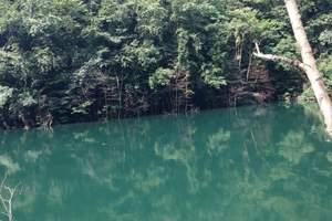 临安青山湖、东天目、神龙川三日休闲养生游
