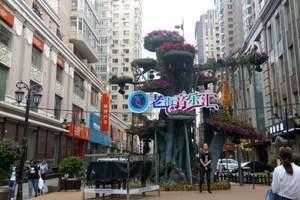哈尔滨一日游报价-哈尔滨跟团一日游路线-去哈尔滨旅游景点大全