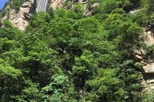 森林公园、天门山、凤凰四日游
