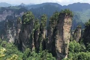 张家界玻璃桥+森林公园+天门山精品小包团3日游,宿山顶观日出