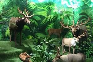 夏令营 广东长隆世界级野生动物王国 科普游学营