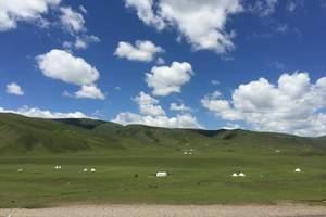 坝上草原在哪?丰宁坝上草原 赏闪电湖全景 观景台观日出4日游