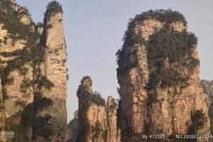 宜昌往返  张家界国家森林公园纯玩四日游