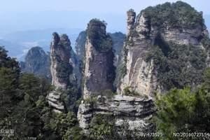 张家界大峡谷玻璃桥、酉阳桃花源、茶峒边城、凤凰古城双高四天游