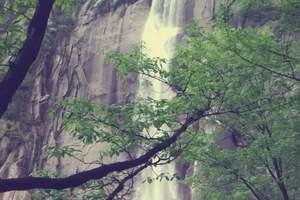福州到顺昌 合掌岩、万佛石窟、文昌桥 、生物科技园1日游