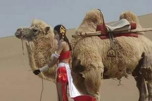 西部五省旅游专列 新疆、天山、喀纳斯、敦煌、丹霞山十四日游