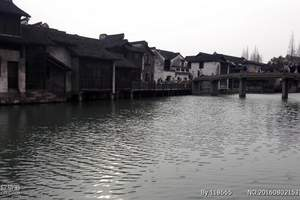 上海至西塘 乌镇 纯玩2日游