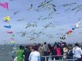 【长岛亲子游】青岛跟团去长岛、蓬莱纯玩二日游 海边度假首选