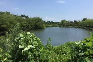 莫干山阳光生态园亲子一日游(大班以上)|杭州周边亲子活动场地