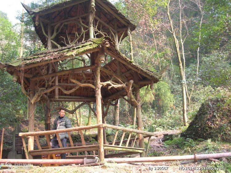 温州旅游景点